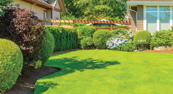 Professional lawn maintenance from Tuyen's Landscaping - Seattle professional landscapers near me - lawn maintenance in Seattle, WA - professional landscaping in Seattle