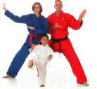 Martial arts classes are fun for the whole family