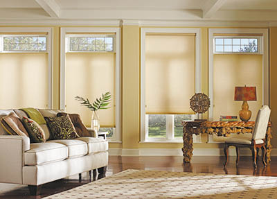 VERTICAL ELEGANCE Rochester NY blinds, coupons rochester ny