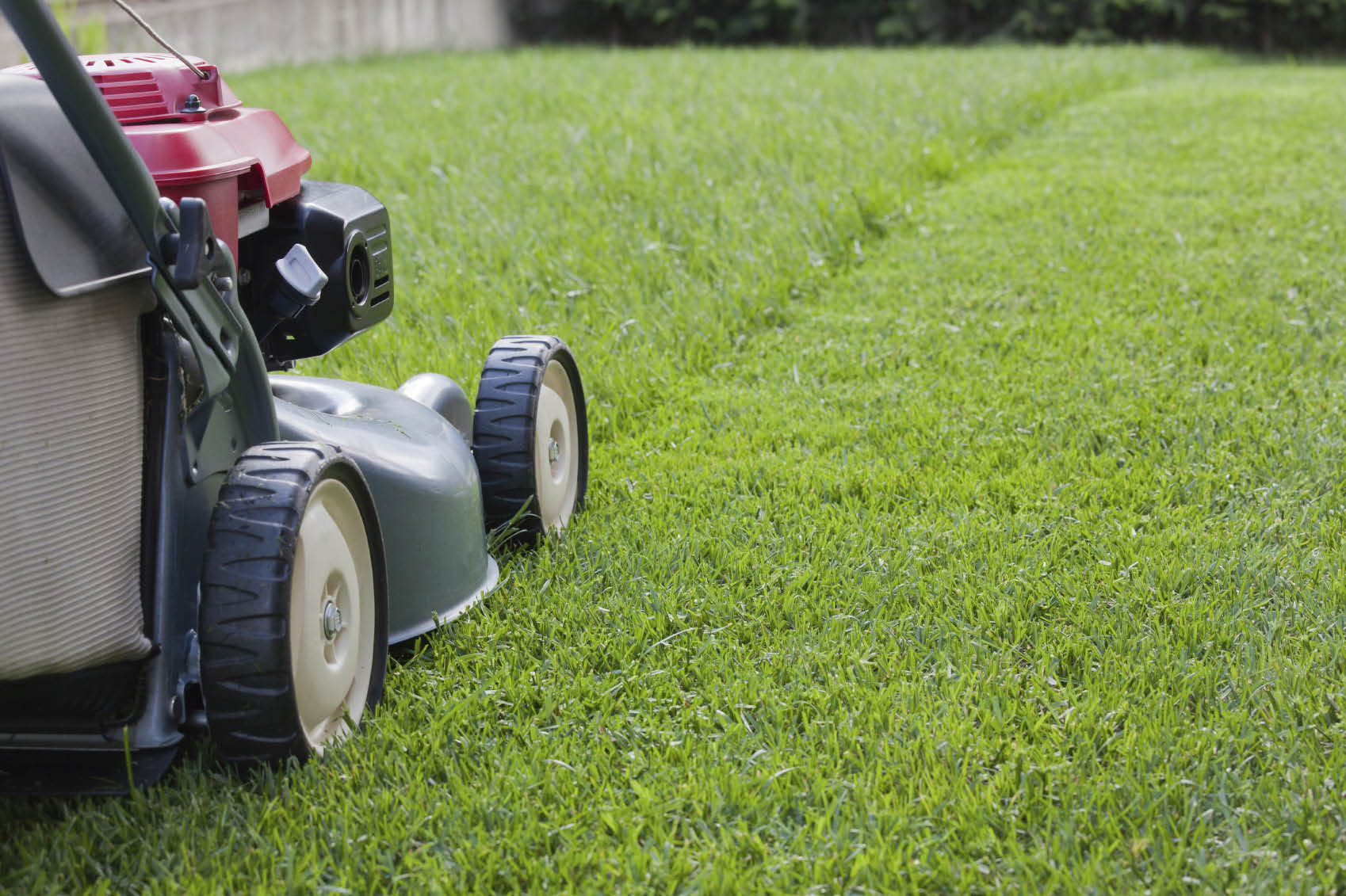 Vinny's Gardening Service - lawn mowing - mowing the lawn - Kent landscapers - landscapers in Kent, WA