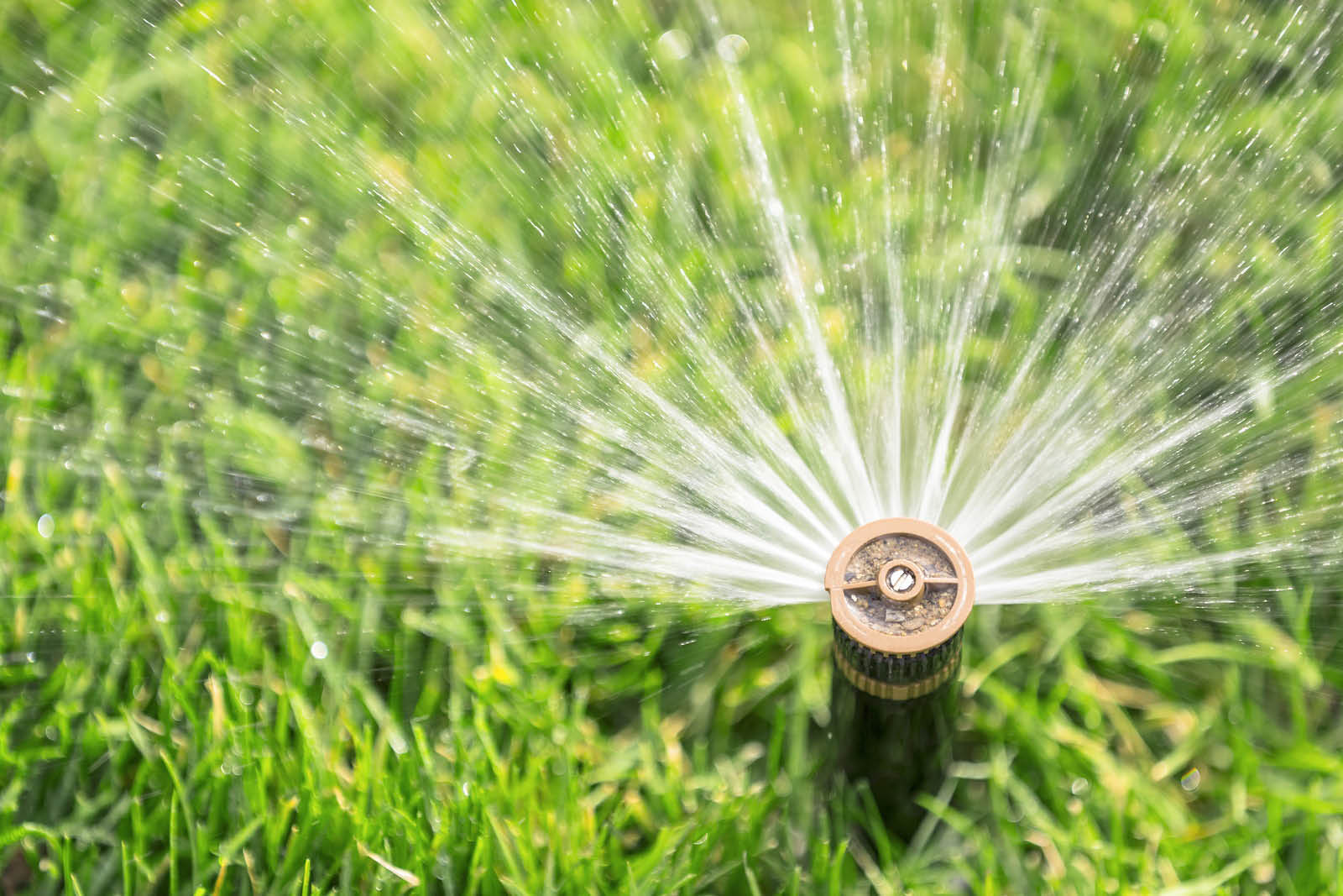 Vinny's Gardening Service in Kent, Washington provides sprinkler system service