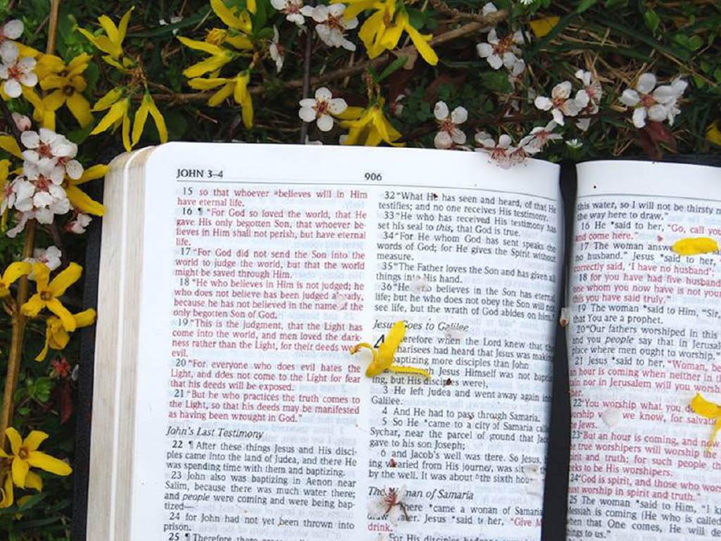 Westphal Avenue Baptist Church bible