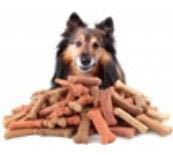 Best natural dog treats at Whiskers Holistic Petcare NY