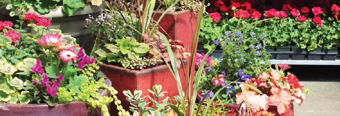 Wight's Home & Garden main banner image - Lynnwood, WA