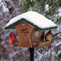 classic birdhouse with cardinals; snow; bird feeding in winter