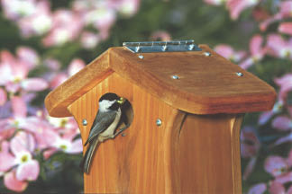 photo of birdhouse from Wild Birds Unlimited in Royal Oak, MI