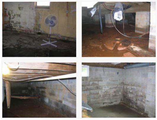 basement, mold, mildew, flooded