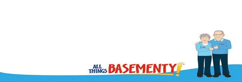 Woods Basement Systems in St. Louis, MO banner; All Things Basementy