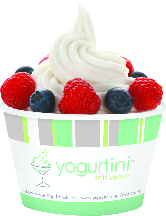 vanilla froyo with berries