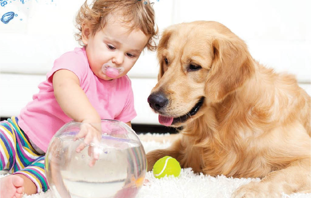 Zerorez Carpet Cleaning is safe for children and pets - carpet cleaners in Sacramento, CA