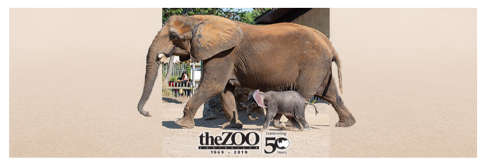 The Louisville Zoo, Celebrating 50 years