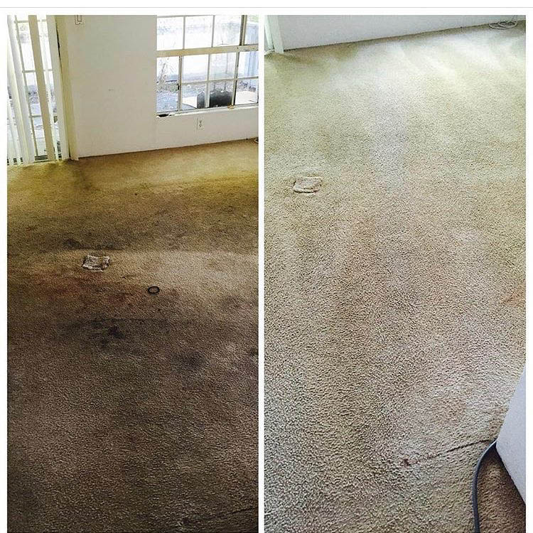 Before & after rug cleaning in your Hauula, HI home