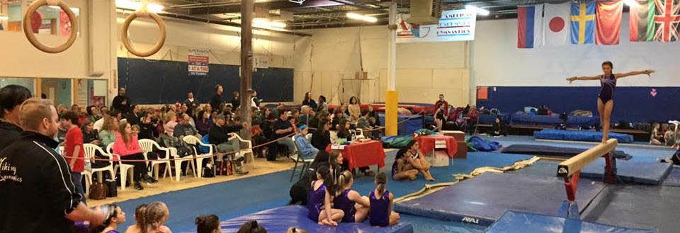 American Academy of Gymnastics in Wheeling, IL banner ad