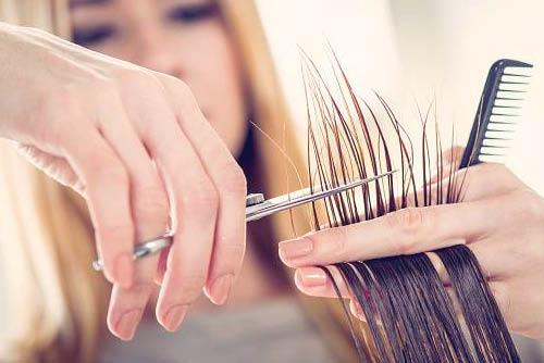 hair cuts; hair stylists