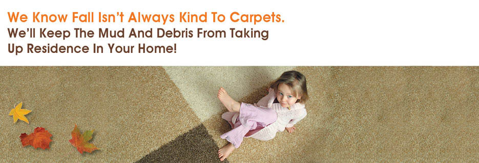 Ace Carpet Cleaning deals Rochester NY valpak banner