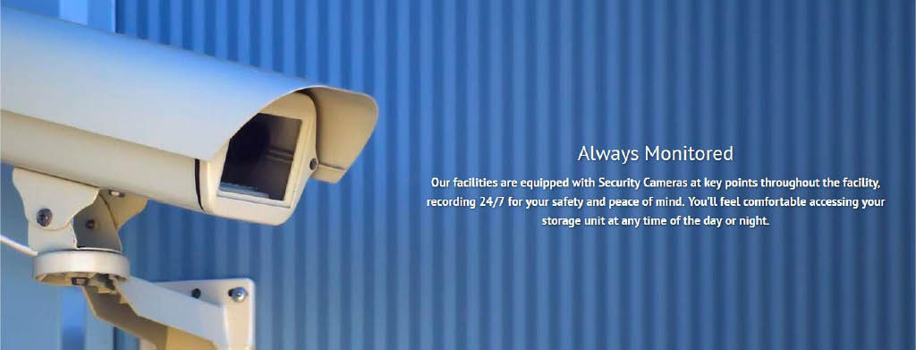 Security cameras secure your unit
