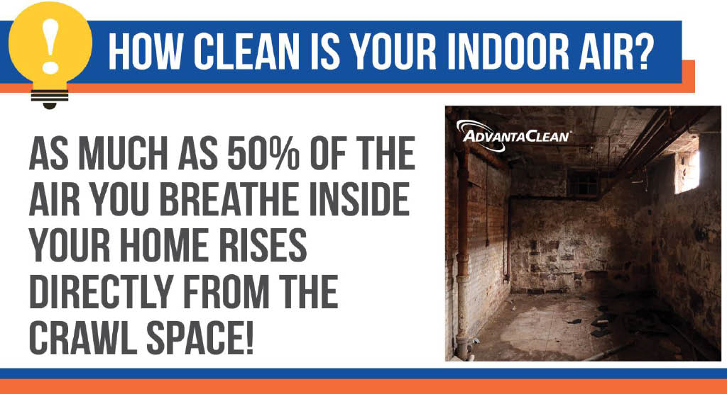 basement waterproofing; mold removal; mold testing in DuBois, PA