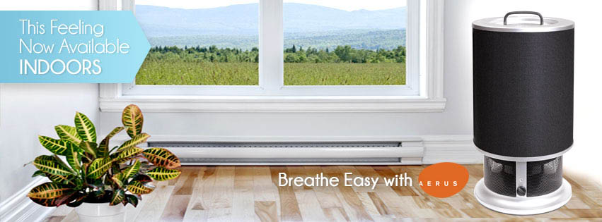 aerus clean air breathe easy air purifying kennesaw, ga