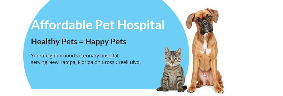AFFORDABLE PET HOSPITAL BANNER TAMPA,FL