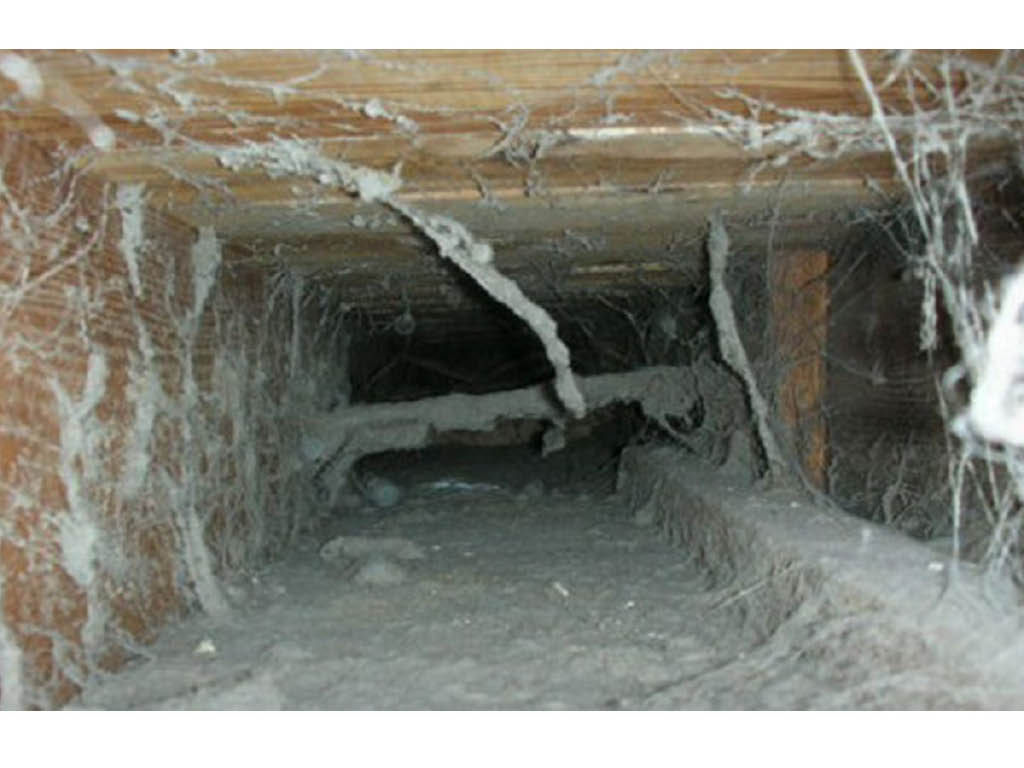 Air Duct Busters furnace