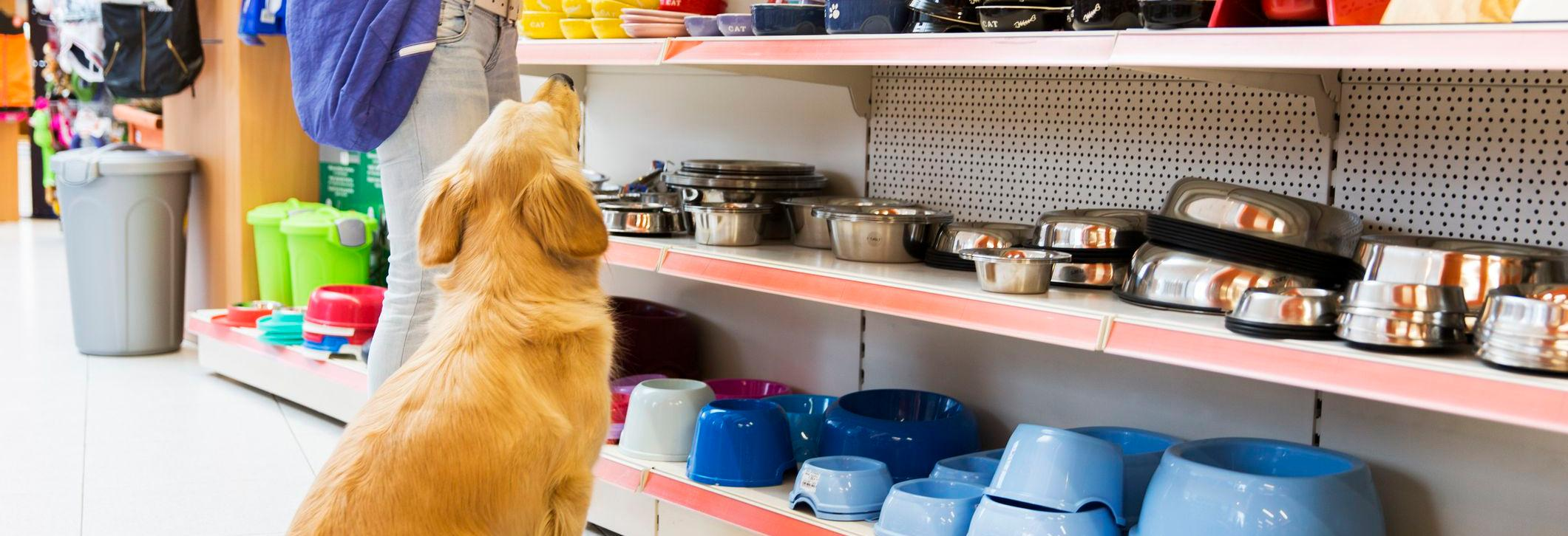 it's all about pets pet store food supplies small animals