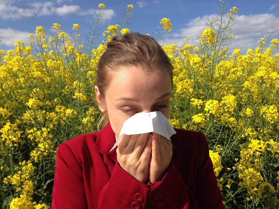 cleveland, allergist, seasonal allergies, pet allergy, asthma, hives, eczema