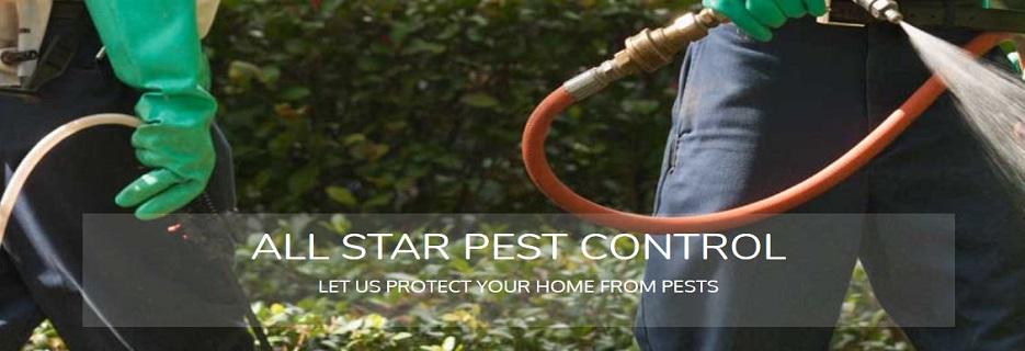 All Star Pest Control in Port Orange, FL banner