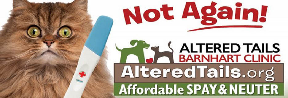 Altered Tails Barnhart Clinic in Tucson, AZ
