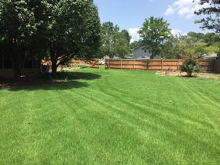 American Beauty Landscaping - lawn care in Lawrenceville, GA