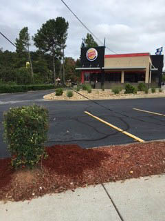 Commercial business landscaping services by American Beauty