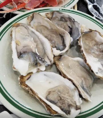 oysters at Asian Buffet in Arlington, TX