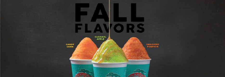 Berry snow cone drinks flavoried slushie drinks coupons and deals