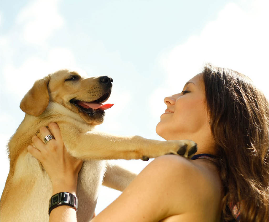Photo of a healthy dog and pet owner