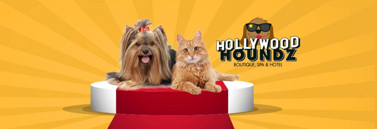 Hollywood Houndz