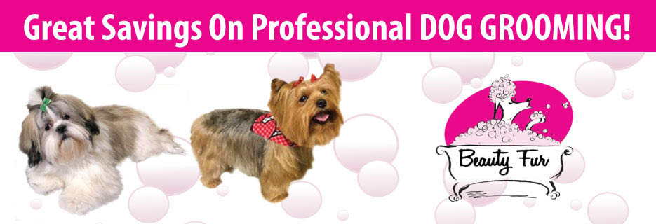 Beauty Fur Professional All Breed Dog Grooming