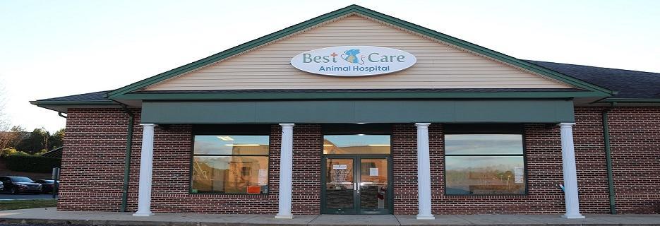 Best Care Animal Hospital banner Matthews, NC