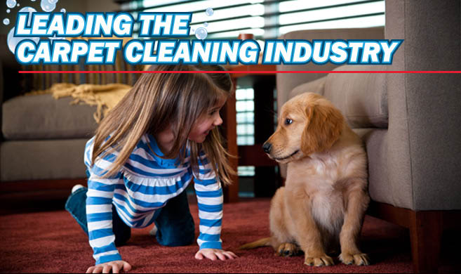 kid & pet friendly cleaning services