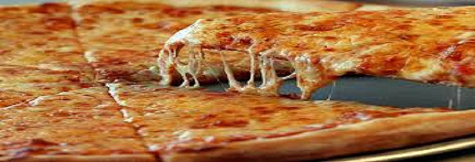 BEST PIZZA OF NORTH HALEDON North Haledon New Jersey 07508
