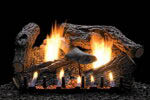 gas logs, gas inserts wood inserts pellet stoves bucks county pennsylvania