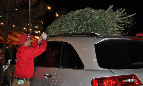 We'll get your tree wrapped and onto the cars' roof