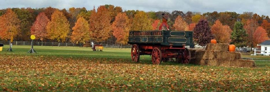 bonnybrook farms fall family farm days corn maze clarksville ohio
