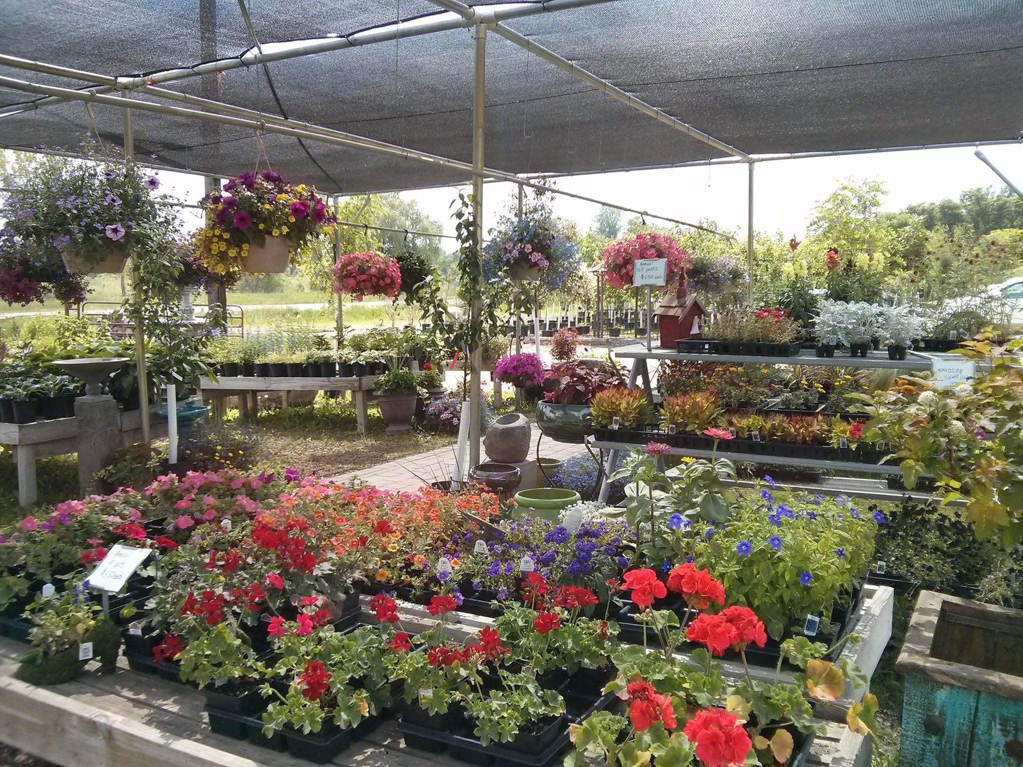 Brookside Garden Center Chaska Garden Ftempo