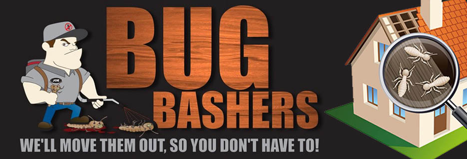 Bug Bashers Termite in California banner