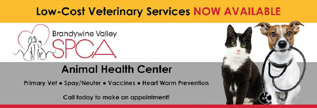 spca,brandywine valley spca,animal health center,west chester pa,spca in west chester