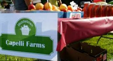 Capelli's Farms in Middletown