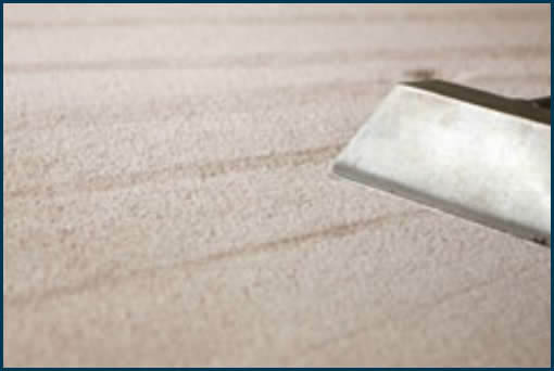 Specialized Cleaning Services, Southeast WI Madison carpet cleaning