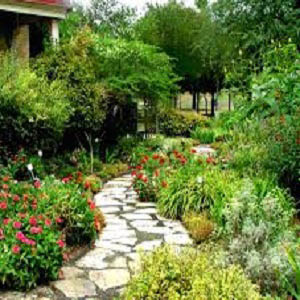 Landscaping, garden, walkway, yard, trees