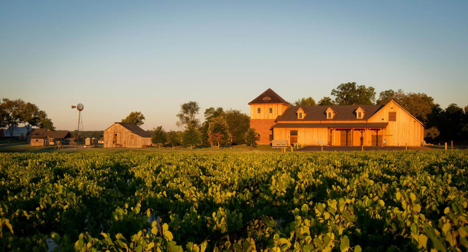 Chateau Bu De Winery, winery, wine, wine valpak, wine discount, winery tour, events, wedding, wine tasting, tasting room, wine coupon, vineyard, live music