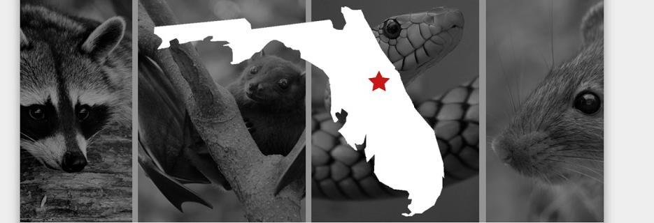 CritterGuys Wildlife in Fern Park, FL banner
