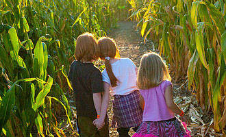 Cornbelly's coupons, haunted maze coupons, Corn Maze Coupons,  Family activities coupons.
